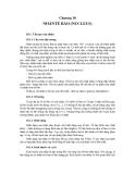 Chương 10: NHÂNTẾ BÀO (NUCLEUS)