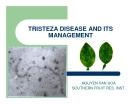 "Báo cáo nghiên cứu khoa học "" TRISTEZA DISEASE AND ITS MANAGEMENT """