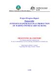 "Báo cáo nghiên cứu khoa học "" INTENSIVE IN-POND RACEWAY PRODUCTION OF MARINE FINFISH (CARD VIE 062/04) - MILESTONE 2& 4 REPORT """