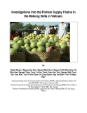 "Báo cáo nghiên cứu nông nghiệp ""Investigations into the Pomelo Supply Chains in the Mekong Delta in Vietnam  """