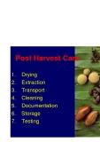 """Báo cáo nghiên cứu nông nghiệp """" TestingPost Harvest Care """""""