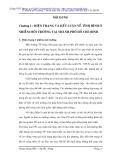 Ô nhiễm môi trường thách thức đối với việc phát triển kinh tế ở thành phố Hồ Chí Minh (Phần 2)