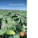 Sổ tay hướng dẫn sản xuất bắp cải theo VietGAP