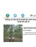 """Báo cáo nghiên cứu nông nghiệp """" Phát triển bền vững và hiệu quả rừng trồng Keo cho gỗ xẻ ở Việt Nam """""""