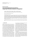 """Báo cáo hóa học: """"  Research Article Overcoming Registration Uncertainty in Image Super-Resolution: Maximize or Marginalize?"""""""