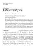"""Báo cáo hóa học: """"  Review Article Bit and Power Allocation in Constrained Multicarrier Systems: The Single-User Case"""""""