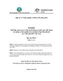 Báo cáo dự án (MS11): Thiết lập vườn ươm và đào tạo để nâng cao hiệu quả chất lượng cây giống và thử nghiệm các mô hình trồng Macadamia tại 3 tỉnh phía Bắc Việt Nam - Báo cáo giai đoạn 11