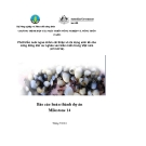 Báo cáo nghiên cứu: Phát triển nuôi ngao nhằm cải thiện và đa dạng sinh kế cho  dân cư nghèo ven biển miền trung  - Milestone 14