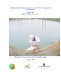 """Báo cáo nghiên cứu nông nghiệp """" Tạo giống cá chép chất lượng cao (Cyprinus carpio L.) cho hộ nuôi cá quy mô nhỏ """""""