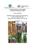 """Báo cáo nghiên cứu nông nghiệp """" Quản lý những bệnh Phytophthora  trên cây trồng ở Việt nam - MS5  """""""