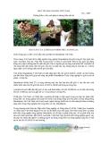 """Báo cáo nghiên cứu nông nghiệp """" Thiết lập vườn ươm và đào tạo nhằm nâng cao chất lượng cây giống và trồng khảo nghiệm các mô hình Macadamia tại 3 tỉnh miền Bắc Việt Nam """""""