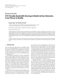 "Báo cáo hóa học: "" Research Article TCP-Friendly Bandwidth Sharing in Mobile Ad Hoc Networks: From Theory to Reality"""
