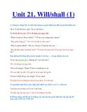 Unit 21. Will/shall (1)