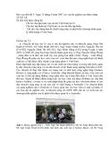 """Báo cáo nghiên cứu nông nghiệp """" bản đồ chuỗi cung ứng và phát triển chương trình quản lý chất lượng ở Việt Nam """""""
