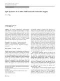 "Báo cáo hóa học: ""Spin dynamics of an ultra-small nanoscale molecular magnet"""