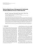"""Báo cáo hóa học: """"  Effective Radio Resource Management for Multimedia Broadcast/Multicast Services in UMTS Networks"""""""