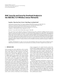 """Báo cáo hóa học: """"  MAC Security and Security Overhead Analysis in the IEEE 802.15.4 Wireless Sensor Networks"""""""