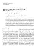 "Báo cáo hóa học: "" Estimation and Direct Equalization of Doubly Selective Channels"""