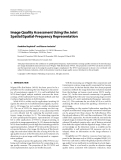 """Báo cáo hóa học: """" Image Quality Assessment Using the Joint Spatial/Spatial-Frequency Representation"""""""