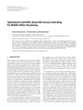 """Báo cáo hóa học: """" Optimized H.264/AVC-Based Bit Stream Switching for Mobile Video Streaming"""""""