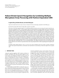 """Báo cáo hóa học: """" Robust Distant Speech Recognition by Combining Multiple Microphone-Array Processing with Position-Dependent CMN"""""""