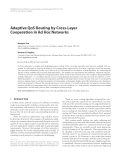 """Báo cáo hóa học: """" Adaptive QoS Routing by Cross-Layer Cooperation in Ad Hoc Networks"""""""