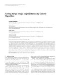 "Báo cáo hóa học: "" Tuning Range Image Segmentation by Genetic Algorithm Gianluca Pignalberi"""