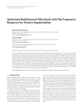 """Báo cáo hóa học: """" Optimized Multichannel Filter Bank with Flat Frequency Response for Texture Segmentation"""""""