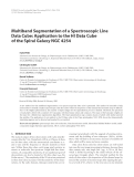 """Báo cáo hóa học: """" Multiband Segmentation of a Spectroscopic Line Data Cube: Application to the HI Data Cube of the Spiral"""""""