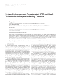 """Báo cáo hóa học: """"System Performance of Concatenated STBC and Block Turbo Codes in Dispersive Fading Channels"""""""