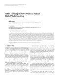 "Báo cáo hóa học: ""  Filters Ranking for DWT-Domain Robust Digital Watermarking"""