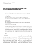 """Báo cáo hóa học: """" Region-Based Image Retrieval Using an Object Ontology and Relevance Feedback"""""""
