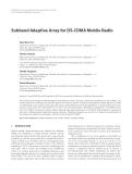 "Báo cáo hóa học: "" Subband Adaptive Array for DS-CDMA Mobile Radio"""