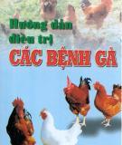 Điều trị các bệnh ở gà
