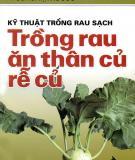 Ebook Kỹ thuật trồng rau sạch: Trồng rau ăn thân củ, rễ củ - PGS.TS. Tạ Thu Cúc
