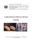 Training Manual on Mushroom Cultivation Technology