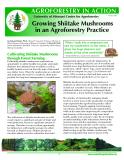 Growing Shiitake Mushrooms in an Agroforestry Practice