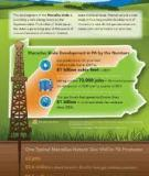The Pennsylvania Marcellus Natural Gas Industry: Status, Economic Im pacts and Future Potential