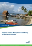 Diagnosis and the Management Constituency of Small-scale Fisheries