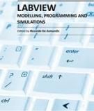 MODELLING, PROGRAMMING AND SIMULATIONS USING LABVIEW™ SOFTWARE