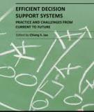EFFICIENT DECISION SUPPORT SYSTEMS – PRACTICE AND CHALLENGES FROM CURRENT TO FUTURE