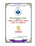 Đề tài: Chiến lược phát triển của công ty bia sabeco