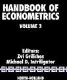 Handbook Of Econometrics_3