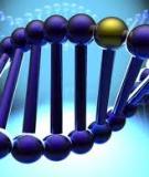 Bổ trợ kiến thức hóa hữu cơ_phương pháp tìm công thức phân tử