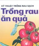 Kỹ thuật trồng rau sạch – Trồng rau ăn quả