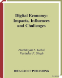 Digital Economy: Impacts, Influences and Challenge