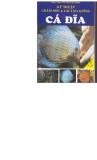 Cá đĩa với kỹ thuật chăm sóc và lai tạo giống