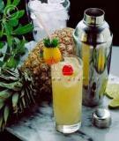 Sổ tay pha chế cocktail_P2
