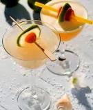 Sổ tay pha chế cocktail_P3
