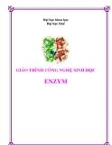 Giáo trình công nghệ Enzyme - PGS.TS Nguyễn Qúy Hai